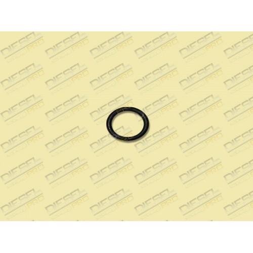 Кольцо уплотнительное  33.1106379