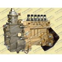 ТНВД Motorpal PP6M10P1f-3491