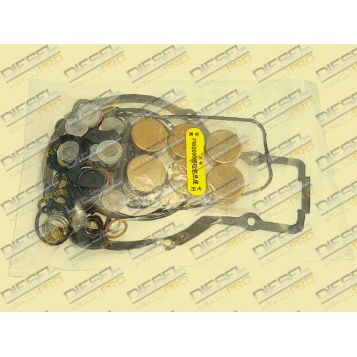 Ремкомплект PW2000 // WUXI WEIFU